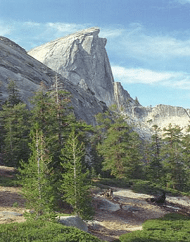 Extranomical Tours Total Yosemite Experience